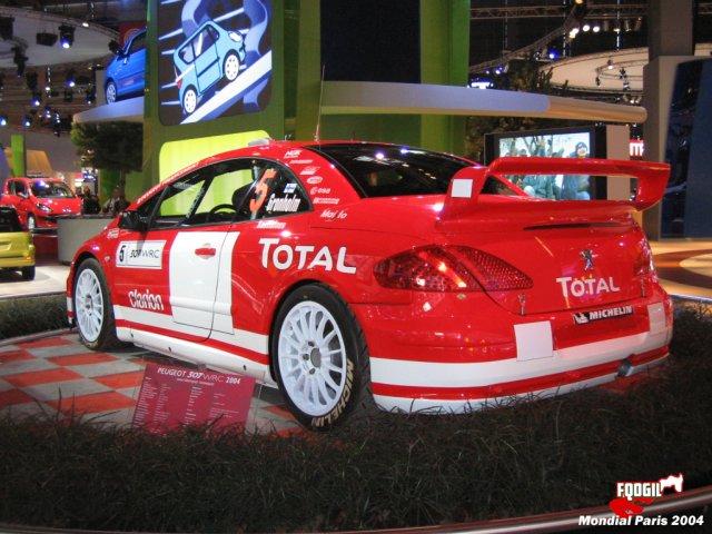 Mondial_Paris_2004ra2.jpg
